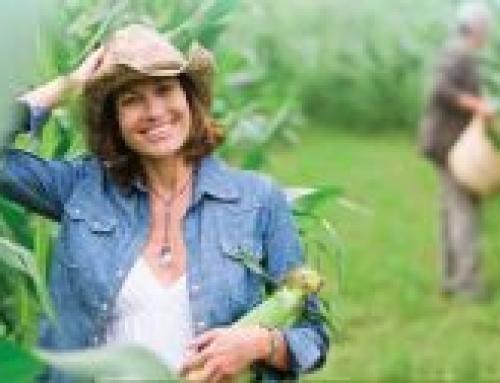 """Подмярка 6.1 """"Стартова помощ за млади земеделски стопани"""", Програма за развитие на селските райони 2014 – 2020 г."""